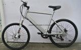山の電気バイク