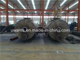 Macchina della farina di penne di capienza di 1 tonnellata