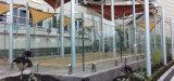 스테인리스 Frameless 유리제 Decking 난간/유리제 방책