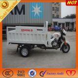 貨物乗客の電気3つの車輪のオートバイの三輪車