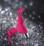 Neue Ankunfts-Geschlechts-Spielzeug-starke Energien-weiblicher Kaninchen-Art-Zerhacker