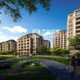 Project van de Woningbouw van Zhongkuangzhiye het Buiten Teruggevende