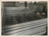 فولاذ يغلفن سلم بناءة سقالة إطار