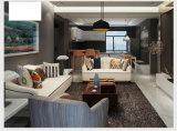 Nueva Llegada de la Tela del Sofá, Muebles Caseros, Diseño Simple Sofá (M615)