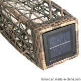 حديقة شمسيّ خارجيّة [رتّن] منظر طبيعيّ ضوء لأنّ درب خارجيّة ([رس601])