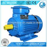 Motore elettrico Y3 per meccanico con lo statore dello Silicone-Acciaio-Strato