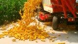 옥수수 귀를 위한 좋은 성과 결합 수확기 기계