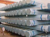 Tubo de acero galvanizado Pre-Galvanizado de carbón del tubo de acero para el invernadero