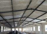 大きい肉焼き器の農場のニワトリ小屋の小屋デザイン/ライト鉄骨フレームのプレハブの養鶏場