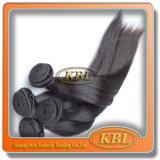 Extensões malaias livres do cabelo de Remy do emaranhado