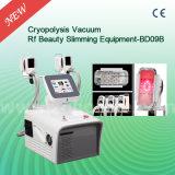 Cellulites de Cryo d'exportateur de Bd09b amincissant la machine