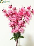 Fiore del fiore di ciliegia del bastone del fiore