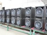 Doppeltes 10 Inch-kompakte Zeile Reihe (CA-0010)