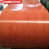Il disegno di legno ha preverniciato la bobina d'acciaio galvanizzata per la decorazione