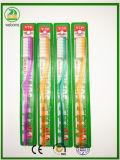 Tipo adulto do VIP do Toothbrush da embalagem mais barata dura transparente da cerda dos punhos