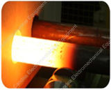 Industriële het Verwarmen van de Inductie IGBT Machine met de Oven van het Smeedstuk van de Noot (3KW~100KW)