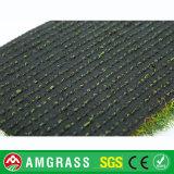 Зеленое поле и синтетическая трава с международным типом