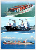 De verschepende Dienst van de Logistiek van de Dienst van China aan de Logistiek van Doubai