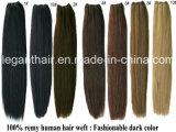 Brasilianisches Jungfrau-Haar gerade, 100% unverarbeitete Menschenhaar-Extensionen