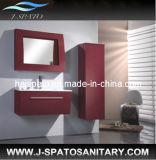 Gabinete de cuarto de baño caliente del PVC (JS-8201)