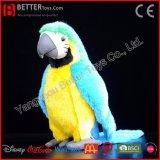Perroquet mou bourré réaliste de jouet de peluche d'oiseau de Macaw d'oiseau d'ASTM