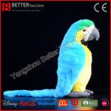 ASTM 현실적 채워진 새 Macaw 연약한 새 견면 벨벳 장난감 앵무새