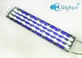 Самые лучшие света аквариума СИД цены 108W White+Blue