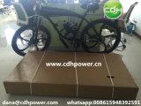 Bicicletta motorizzata 2-Stroke Pieno-Motorizzata