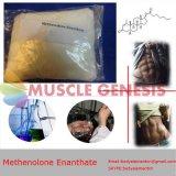 99% de pureza Primobolan esteroides 303-42-4 Methenolone Enanthate para el desarrollo muscular