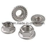 Usine d'acier inoxydable de noix de bride d'hexagone de Chine DIN 6923