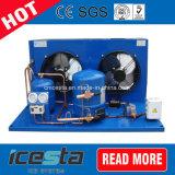 Icesta 냉장고 상업적인 음식 냉각 압축기 어는 압축 단위