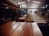 Ursprüngliches Holz, das Polierwand-Fliese schaut