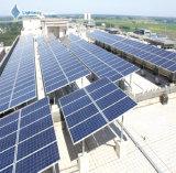 Comitato solare del silicone policristallino di rendimento elevato 320W/modulo solare