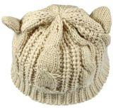 普及した最も売れ行きの良い猫の帽子