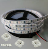 Striscia del chip 30leds 9W DC12V LED di colore completo SMD5050 di RGB IP68