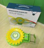 정원, 공원, 도로를 위한 통합 태양 LED 훈장 빛