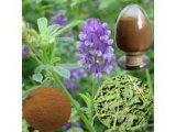 10:1 dell'estratto dell'erba medica, flavonoidi 5%Total da Uv-Forza