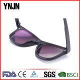Feito em óculos de sol magnéticos da alta qualidade UV400 de China
