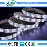 IP65 5mm Breitensuperhelligkeit SMD3528 LED Streifen-Licht