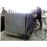 De Machine van de Snijder van het Blok van de Steen van de brug om de Plakken van het Marmer Te snijden/van het Graniet (DL3000)