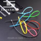 Tamanhos de nylon plásticos da cinta plástica com o Ce aprovado