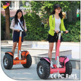 Sports de plein air Wind Rover Beach Scooter 19inch E Scooter pour adulte