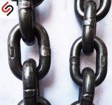 G100 che alzano e catena a maglia con il livello - concentrazione - diametro 8