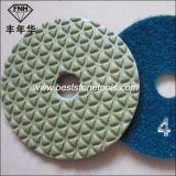 New 5 Step Dry Diamond Polishing Pad
