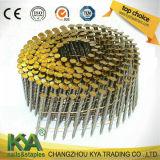 Clous assemblés par jaune de zinc pour la construction et l'empaquetage