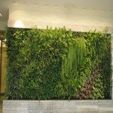 Plantas verdes artificiales profesionales de la pared para el jardín