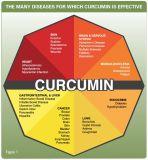 Curcumina dell'estratto della curcuma per alimento, supplemento, estetica