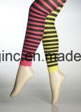 De Breiende Machine van legging voor Vrouw