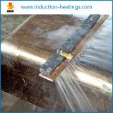 Indurimento di induzione/che estigue macchina per i prodotti dell'acciaio inossidabile