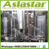 Flaschenabfüllmaschine des vollautomatischen Drehwasser-10000bph
